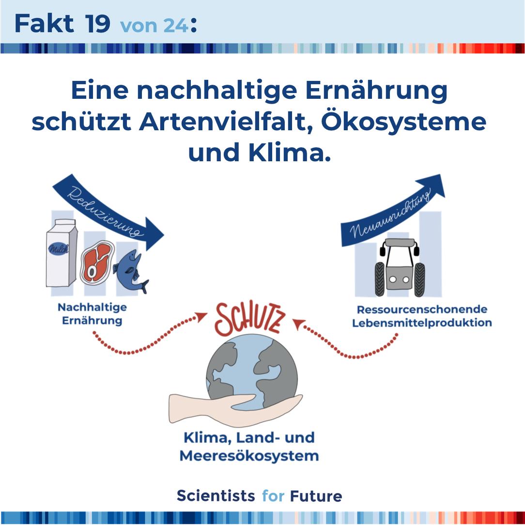 hildebrandt-illustration-scientists-for-future-fakten