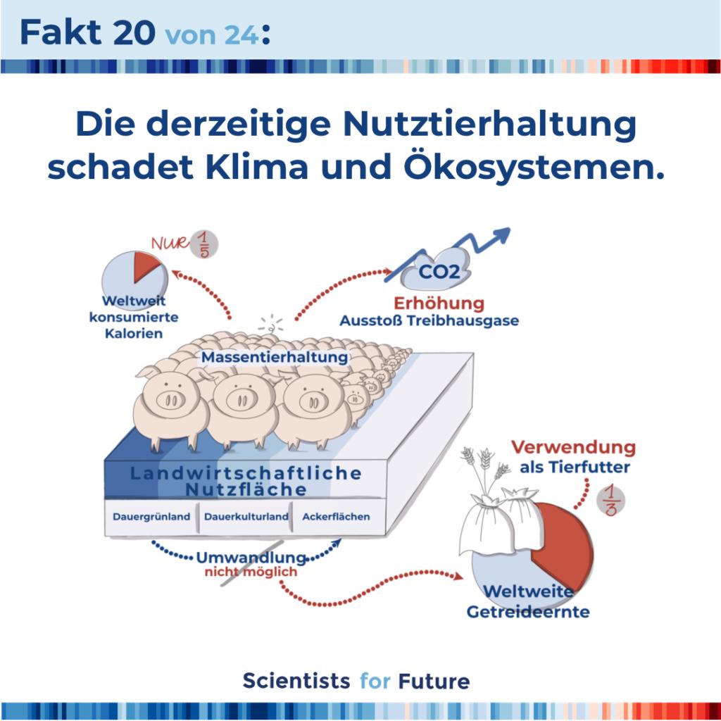 hildebrandt-illustration_scientists_for_future_fakten
