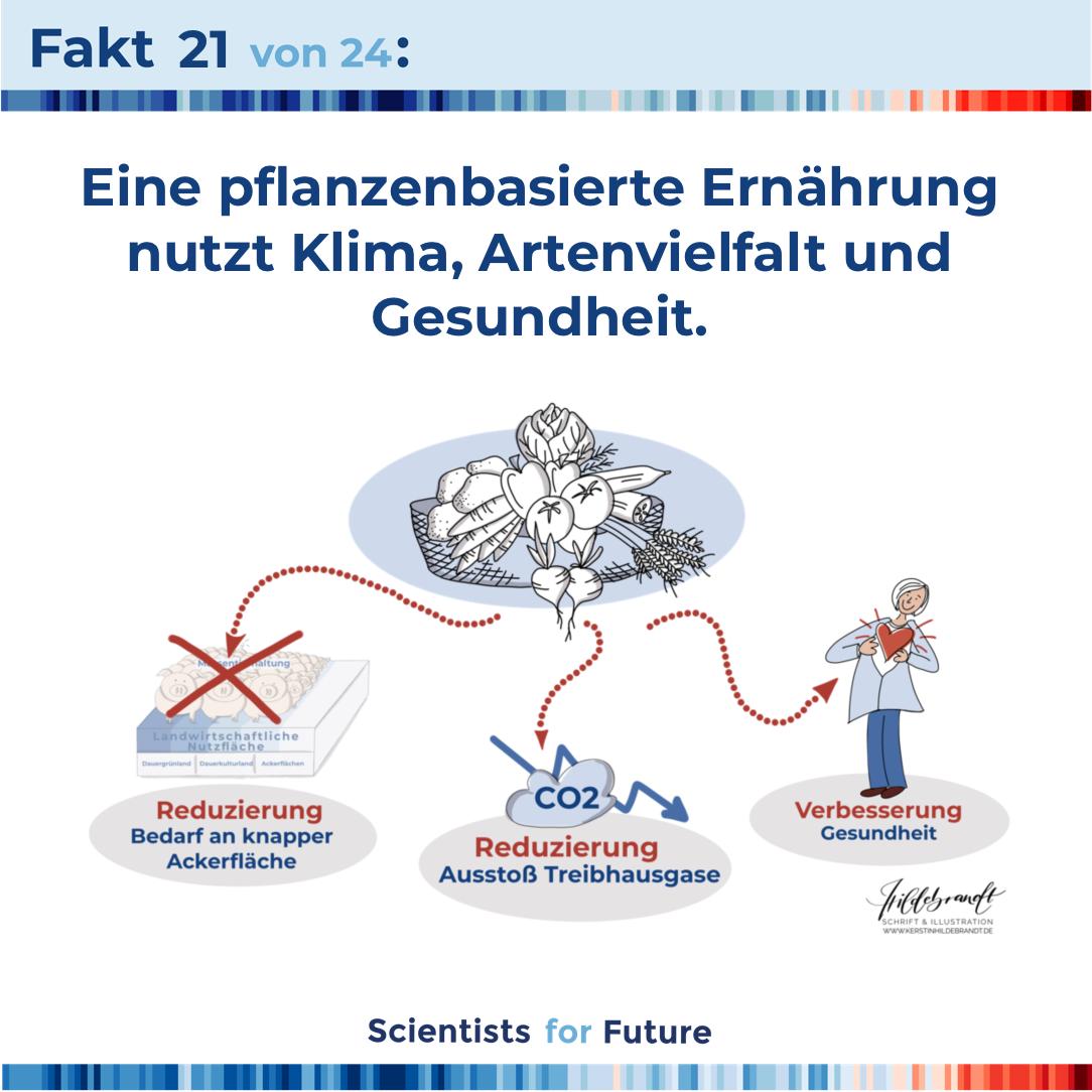 hildebrandt-illustration_scientist_for_future_fakten